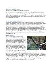Les meir. - Haugaland landbruksrådgjeving