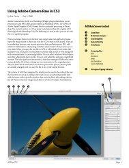 Using Adobe Camera Raw in CS3 - WPS