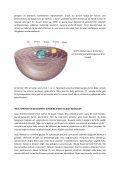 Bilim-Tarihi-Işığında-Görelilik-Teorileri-Kuantum-Mekaniği-ve-Her-Şeyin-Teorisi - Page 4