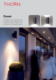 Versatile and contemporary architectural floodlight ... - Thorn Lighting