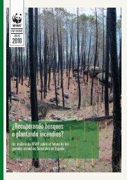 Â¿Recuperando bosques o plantando incendios? - WWF