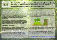 A summary of information relating to the management of woodlands ...