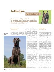 Fellfarben, Der D-Lokus, Teil 5 - Schweizer Hunde Magazin