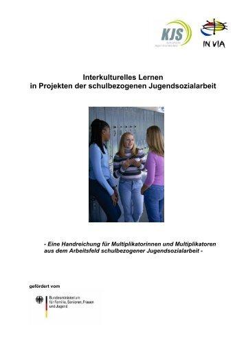 Interkulturelles Lernen in Projekten der schulbezogenen ...