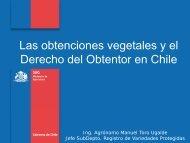 Las obtenciones Vegetales y el Derecho del Obtentor en Chile - Inapi