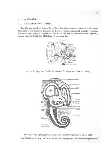 boehnke_habil_041.pdf