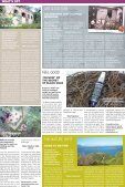 New Caledonia Weekly - Page 4