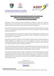 INTENDENCIA DEPARTAMENTAL DE FLORIDA - ADEF