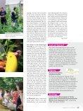 Reportage - Seite 4