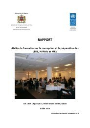 RAPPORT - International Partnership on Mitigation and MRV
