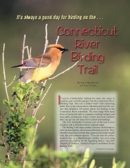 Connecticut River Birding Trail - New Hampshire Fish and Game ...