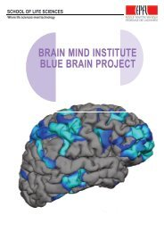 brain mind institute blue brain project - LIFE SCIENCES AT THE EPFL