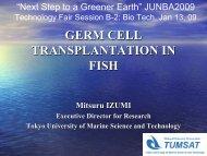 Germ Cell Transplantation in Fish - JUNBA