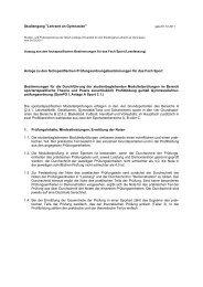 Anlage zu den fachspezifischen Bestimmungen - GeKo