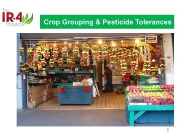 Crop Group