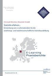 Praxisbericht 46 - ERCIS - European Research Center for ...