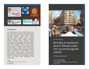 Révoltes et transitions dans le Monde arabe : vers un nouvel ...