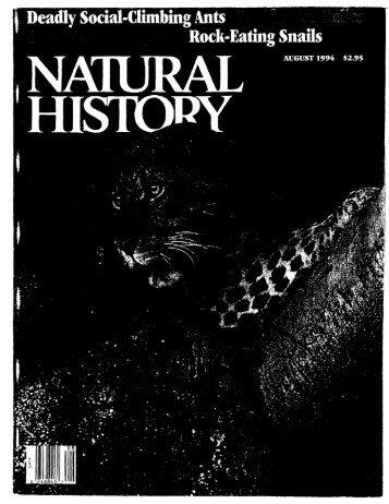 Isbell 1994 Nat Hist