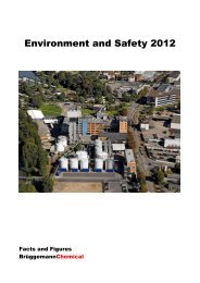 Environment and Safety Report - L. Brüggemann KG