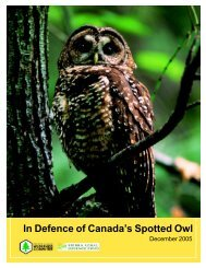 In Defence of Canada's Spotted Owl - Wilderness Committee