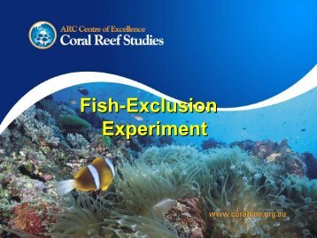 Resilience of reefs