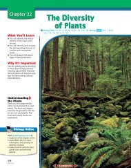 Chapter 22: The Diversity of Plants - New Braunfels ISD