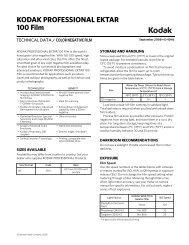 Kodak Ektar 100 Datasheet PDF - Silverprint