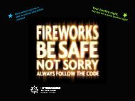 Fireworks Interactive PDF