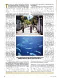 Maldives - Islands - Page 4