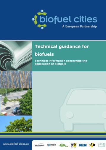 Appendix IV Technical guidance for biofuels - Biofuel Cities