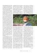 Hildegard von Bingen: Bausteine des Lebens Hildegard von Bingen ... - Seite 7