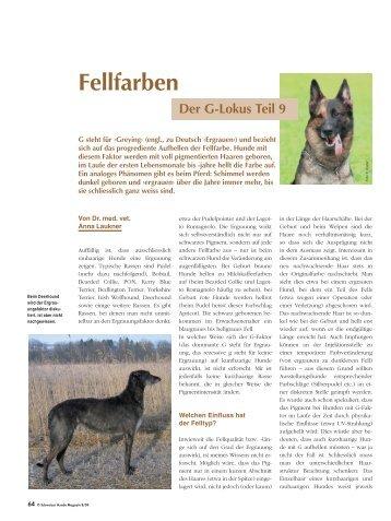 Fellfarben - Schweizer Hunde Magazin