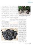 Fellfarben - Schweizer Hunde Magazin - Seite 2