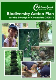 Biodiversity Action Cover - Chelmsford Borough Council