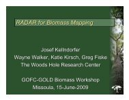 RADAR for Biomass Mapping