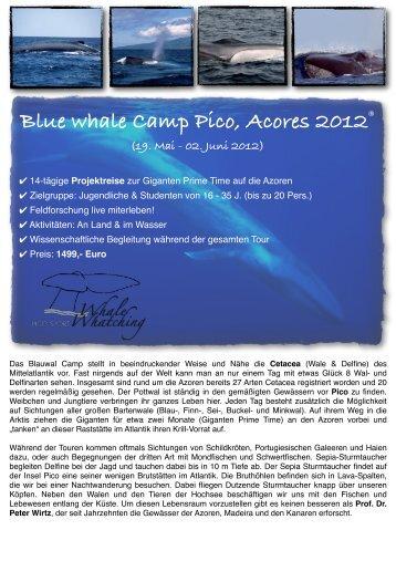 Blauwal Camp Azoren 2012 Deutsch - Pico