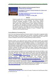 Macro-markets and Environmental Futures - Institute for ...