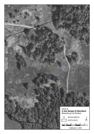 Fotoanhang Monitoring Vegetation - Hotzenwald LIFE