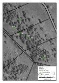 Fotoanhang Monitoring Vegetation - Hotzenwald LIFE - Seite 5