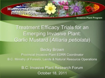 Garlic Mustard - Invasive Plant Council of BC