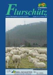 Ausgabe 139 vom 24.02.2007 - Gemeinde Morsbach