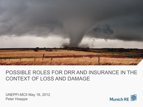 MCII - Munich Climate-Insurance Initiative