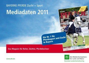 Mediadaten 2011