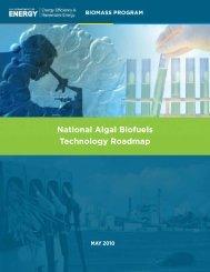 National Algal Biofuels Technology Roadmap - Florida Energy ...
