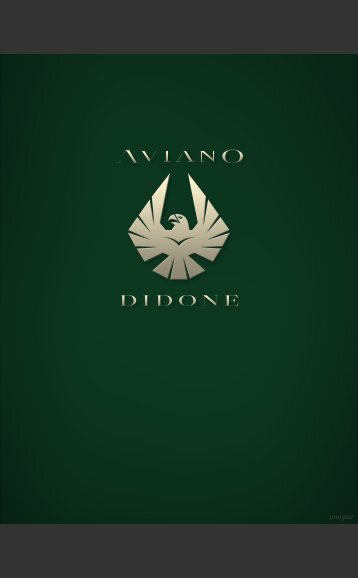 Aviano Didone Bold - MyFonts