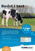 Studietur til EHRC- skuet i Freiburg, Schweiz - Dansk Holstein - Page 4