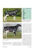Studietur til EHRC- skuet i Freiburg, Schweiz - Dansk Holstein - Page 6