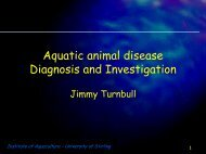 Aquatic animal disease Diagnosis and Investigation - Staff.stir.ac.uk