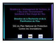 SIG du Plan National de Protection Contre les Inondations - emwis