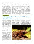 download the FrogLog 87 - Amphibian Specialist Group - Page 4